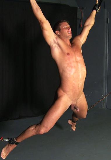 free gay porn link